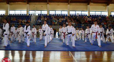 Εξετάσεις έγχρωμων ζωνών & επιδείξεις Taekwondo & Hapkido Α.Σ. Αργυρούπολης